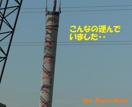 10メートル以上のコンクリート柱.jpg