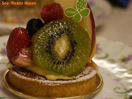 フルーツたくさんのタルト2.jpg