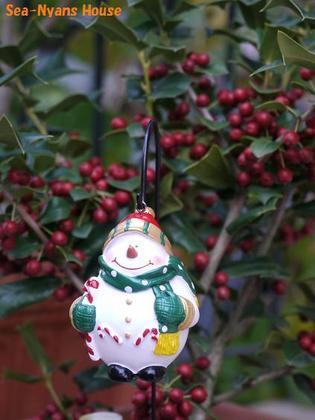 後ろの木はクリスマスホーリー.JPG