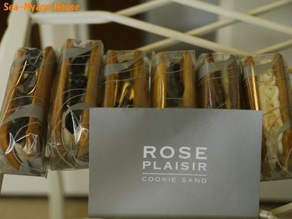 Rose Plaisir.jpg